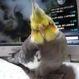 パソコンに のる~